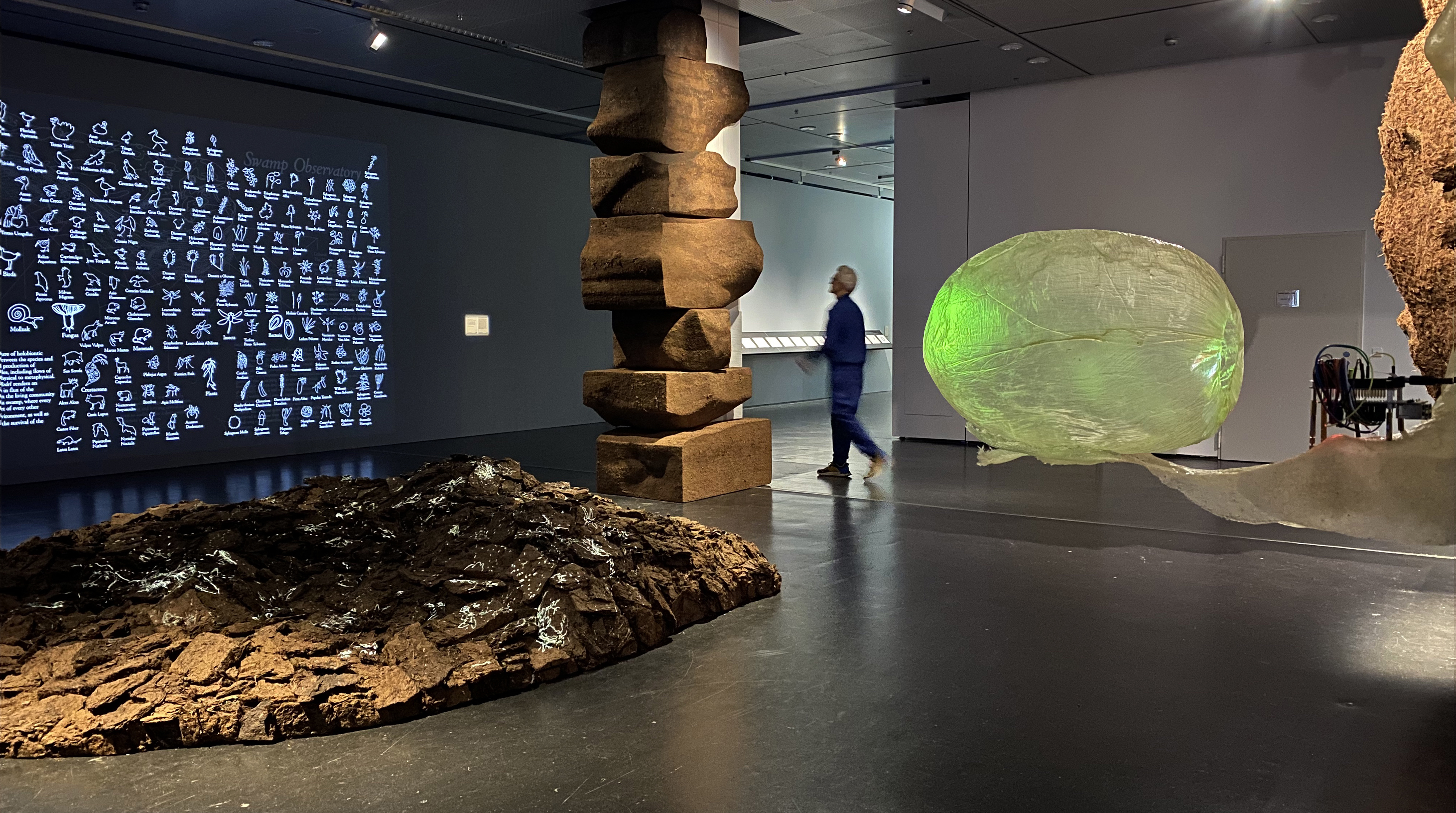 Nomeda & Gediminas Urbonas with MIT Climate Visions. Swamp Observatory, 2020. Mixed media installation. Produced for Critical Zones. Observatories for Earthly Politics exhibition, Center for Art and Media ZKM, Karlsruhe, 2020. Photo: Urbonas Studio